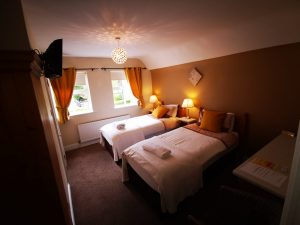 Twin Room (2 single beds ensuite)